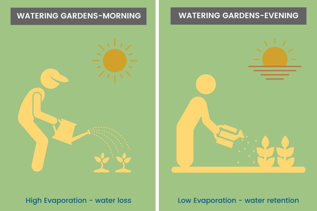 Watering-garden-timing